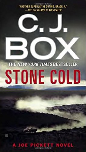 Mysterious Book Report Stone Cold