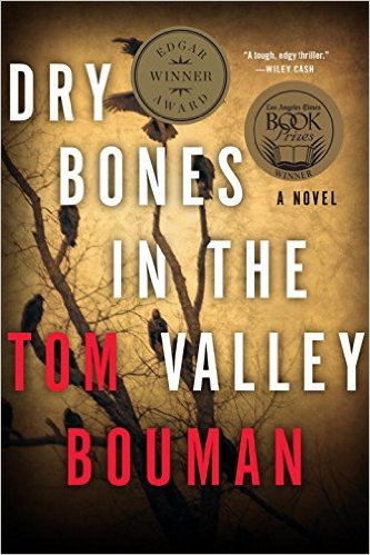 Mysterious Book Report Dry Bones In The Valley
