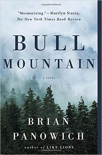 Mysterious Book Report Bull Mountain