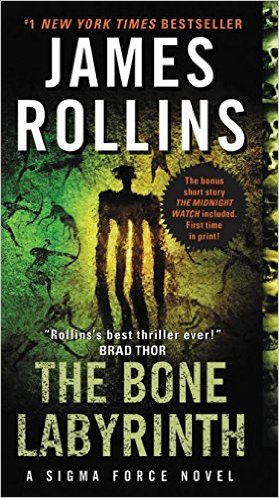 Mysterious Book Report The Bone Labyrinth
